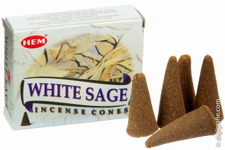 White Sage Cones - Weißer Salbei Kegel