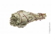 Weißer Salbei, 10-15 g